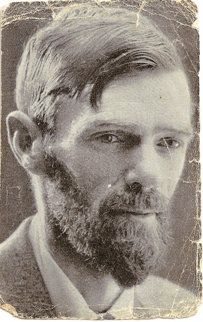 dh lawrence essay education of the people