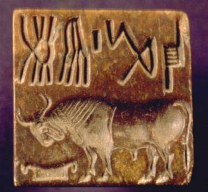 Indus Valley bull