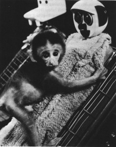 Harlow's Monkey Experiments