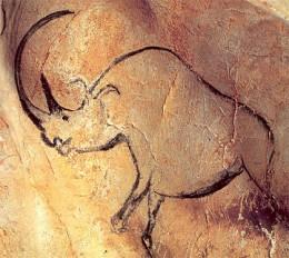 Chauvet Rhino