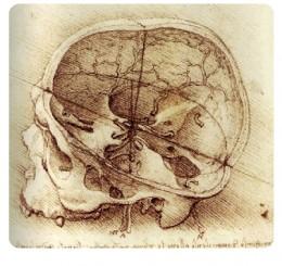 leonardo-view-of-a-skull-c1489