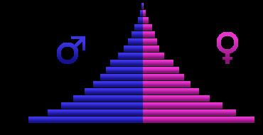 Representative Age Pyramid for an Expanding Nonwhite Race (Angolan age pyramid, 2005)