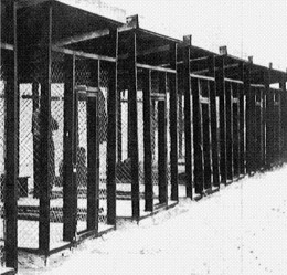 Security_cages_where_Ezra_Pound_was_held,_Pisa,_Italy,_1945