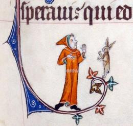 RabbitDebate