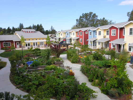 petaluma-ave-homes-cohousing