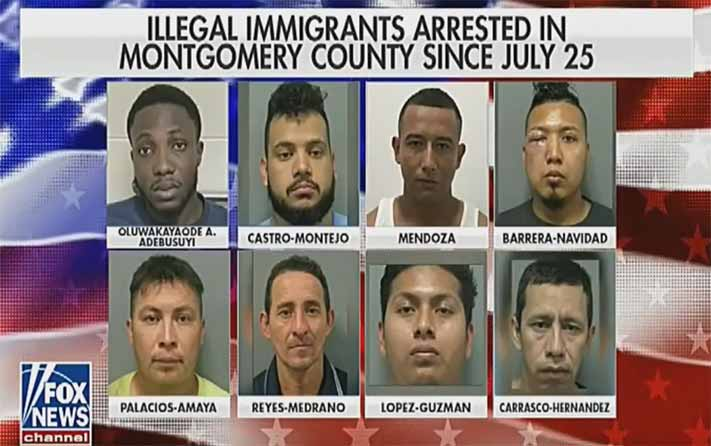 Mugshots of eight criminal aliens released in Montgomery County